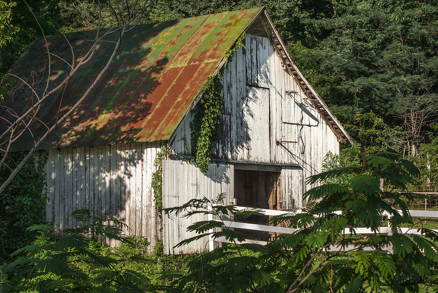 Barn Photograph - Old Whitewashed Barn In Tennessee by Debbie Karnes