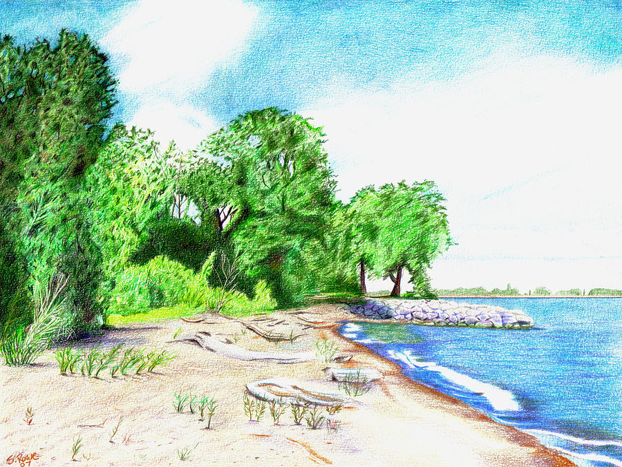 Old Woman Creek - Huron Ohio Drawing