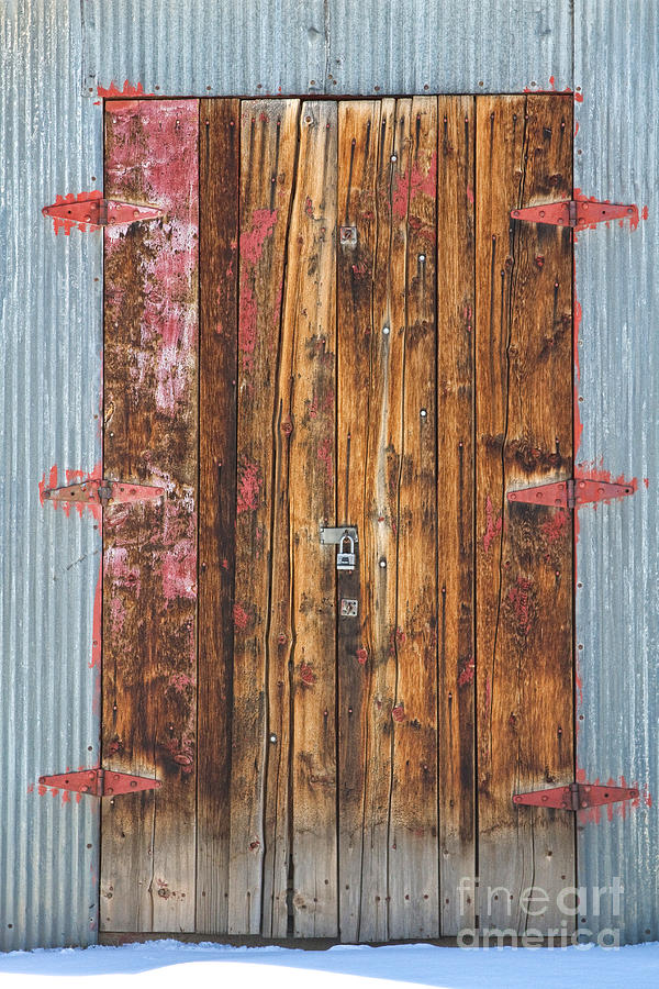 Old Wood Door With Six Red Hinges Photograph