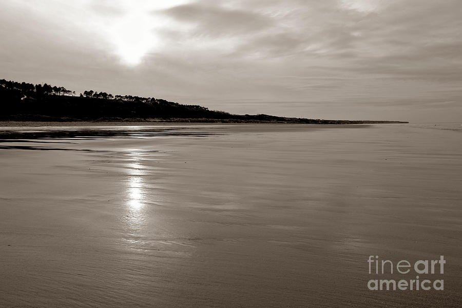 Omaha Beach Photograph  - Omaha Beach Fine Art Print
