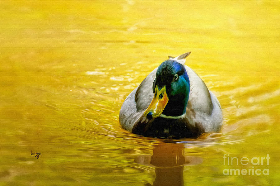 On Golden Pond Photograph  - On Golden Pond Fine Art Print