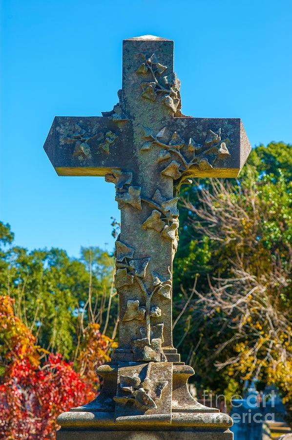 On The Cross Photograph