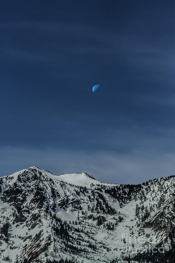 Once In A Blue Moon Photograph