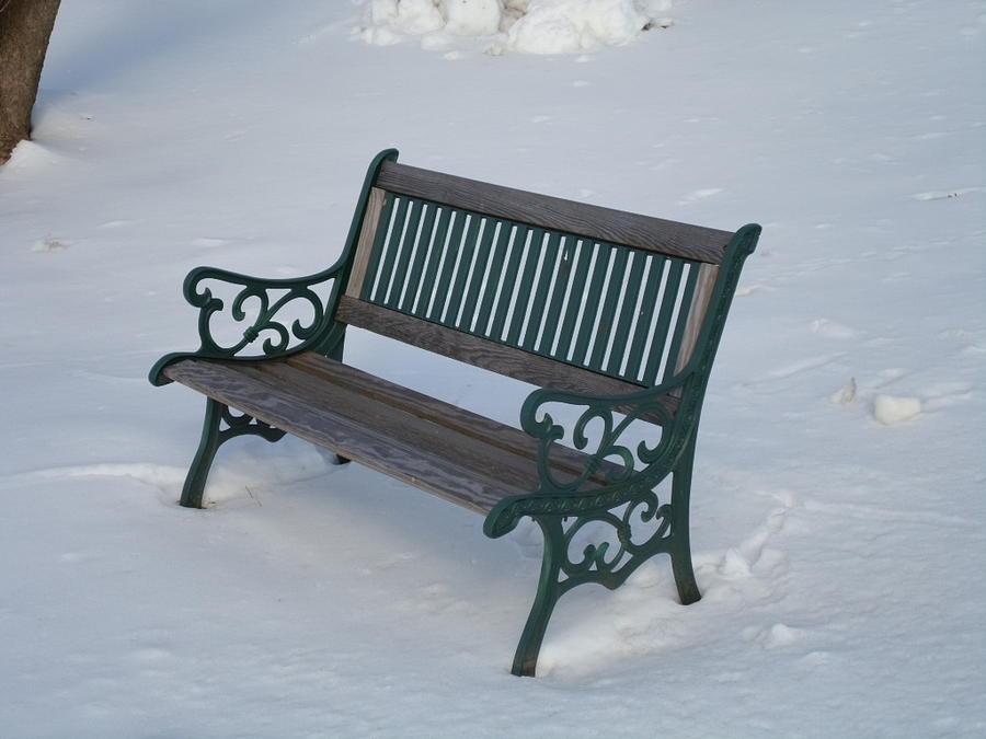 One Bench Photograph  - One Bench Fine Art Print