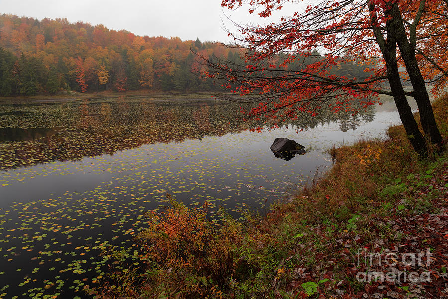 Worcester Ponds Photograph - One Of The Worcester Ponds by Charles Kozierok