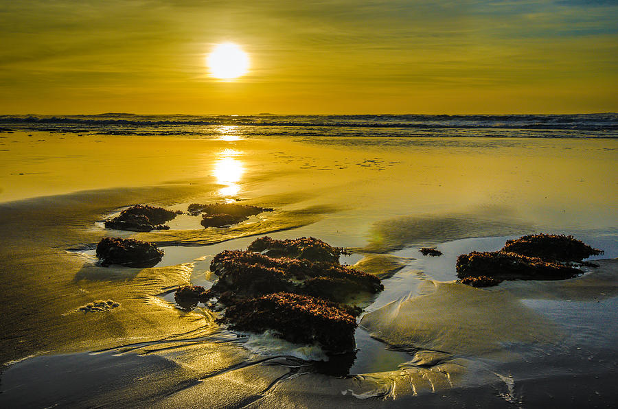 Beach Photograph - One Oregon Coast Sunset by Puget  Exposure
