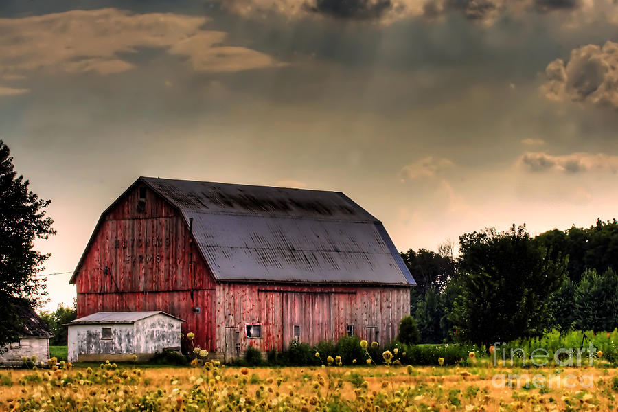 Ontario Barn In The Sun Photograph