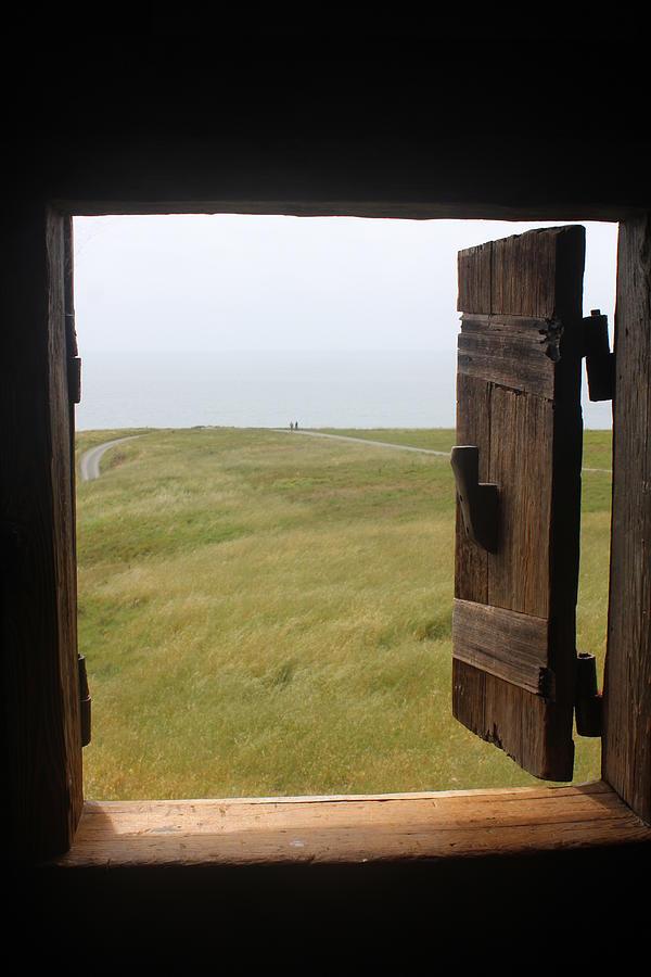 Open Window In Wild World Photograph By Elena Wells