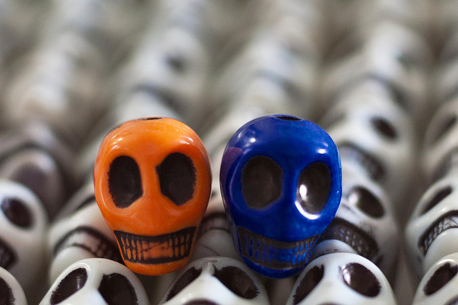 Smiles Photograph - Orange And Navy Blue by Mike Herdering
