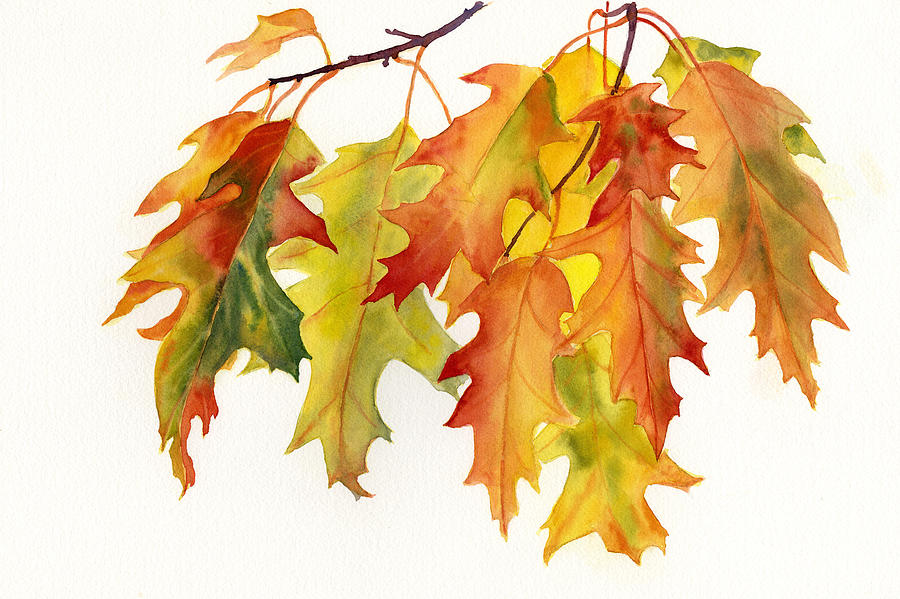 Orange And Yellow Oak Leaves Painting  - Orange And Yellow Oak Leaves Fine Art Print