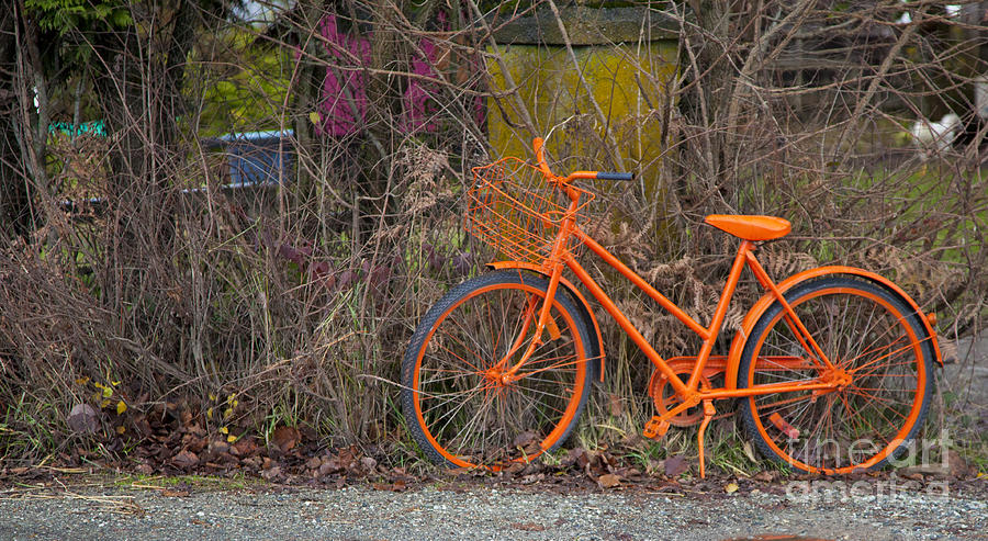Orange Bike Photograph  - Orange Bike Fine Art Print