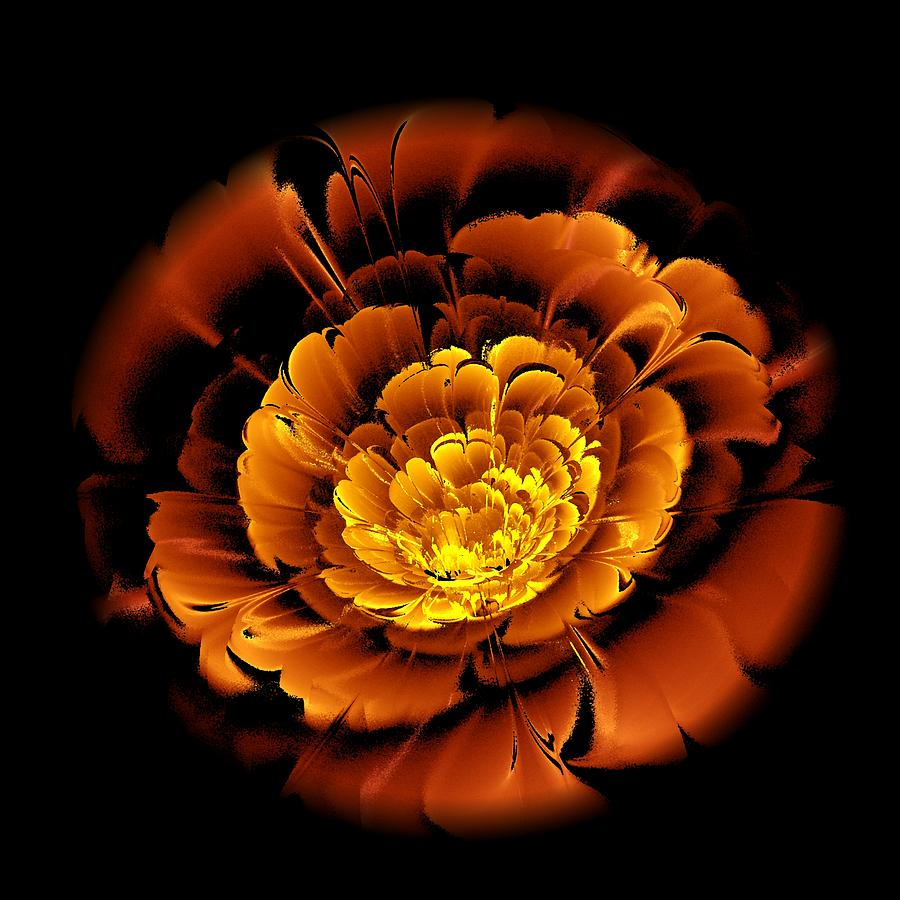 Orange Flower  Digital Art