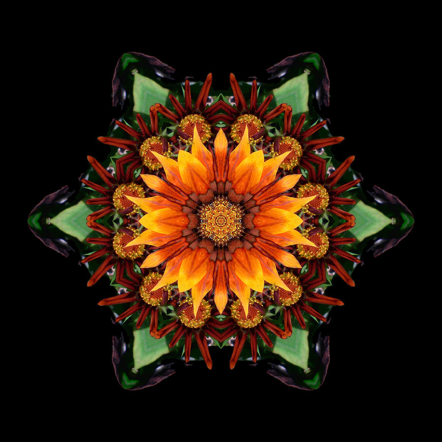 Orange Gazania IIi Flower Mandala Photograph