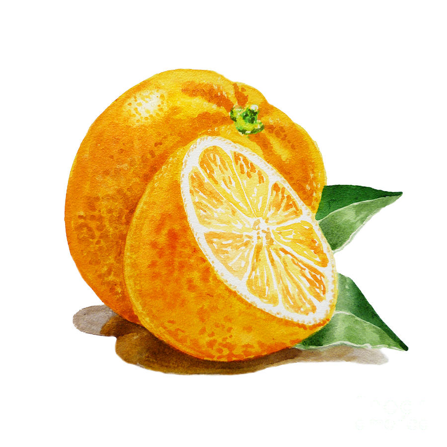 Orange Painting  - Orange Fine Art Print