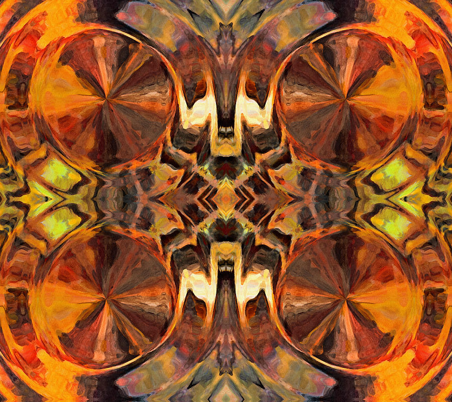 Orange Slices Ornamental Abstract Digital Art