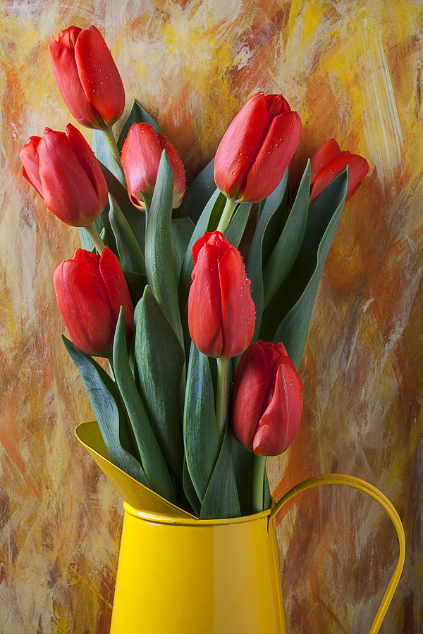 Orange Tulips In Yellow Pitcher Photograph