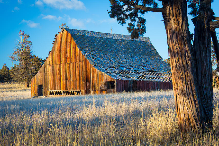Oregon Barn Photograph  - Oregon Barn Fine Art Print