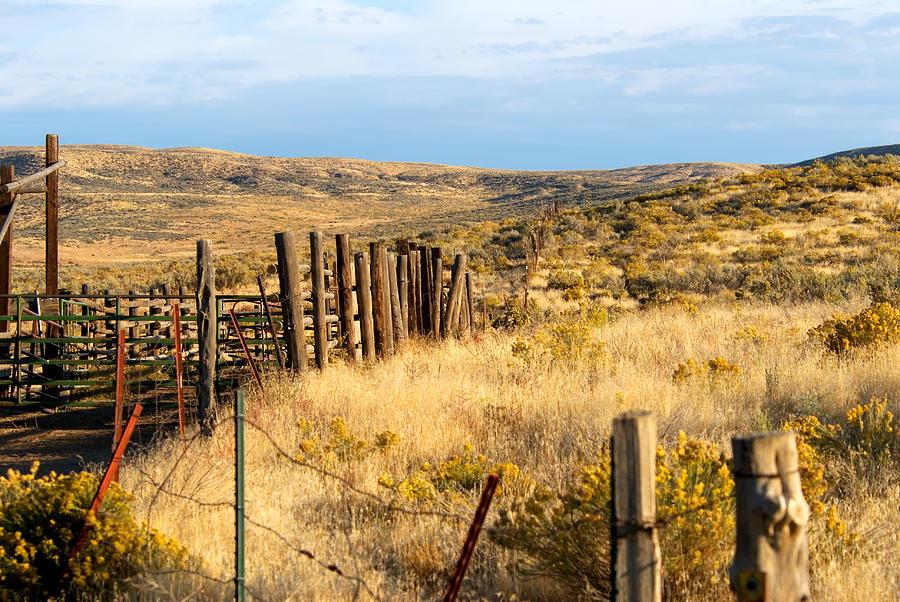 Corral Photograph - Oregon Corral by Betty LaRue