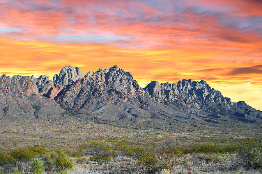 Organ Mountain Sunrise Photograph  - Organ Mountain Sunrise Fine Art Print