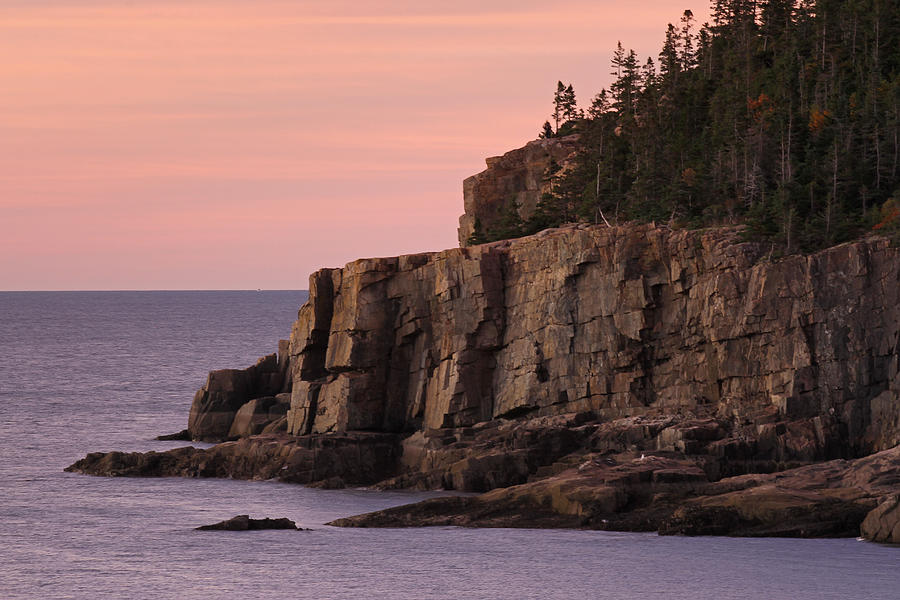 Acadia Photograph - Otter Cliff At Dawn by Juergen Roth