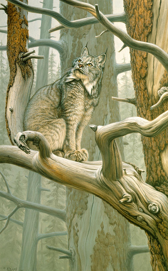Out Of Reach - Lynx Painting