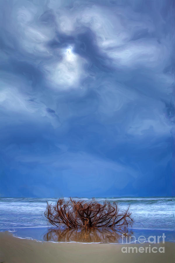 Outer Banks - Driftwood Bush On Beach In Surf II Painting