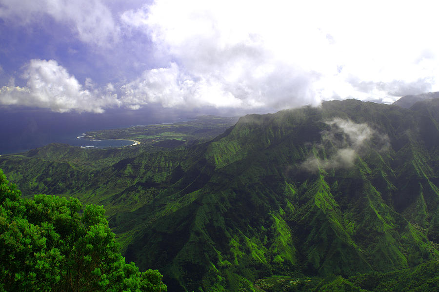 Overlooking Hanalei Bay Photograph  - Overlooking Hanalei Bay Fine Art Print