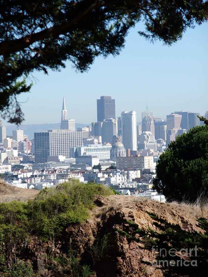 Overlooking The City By The Bay San Francisco  Photograph
