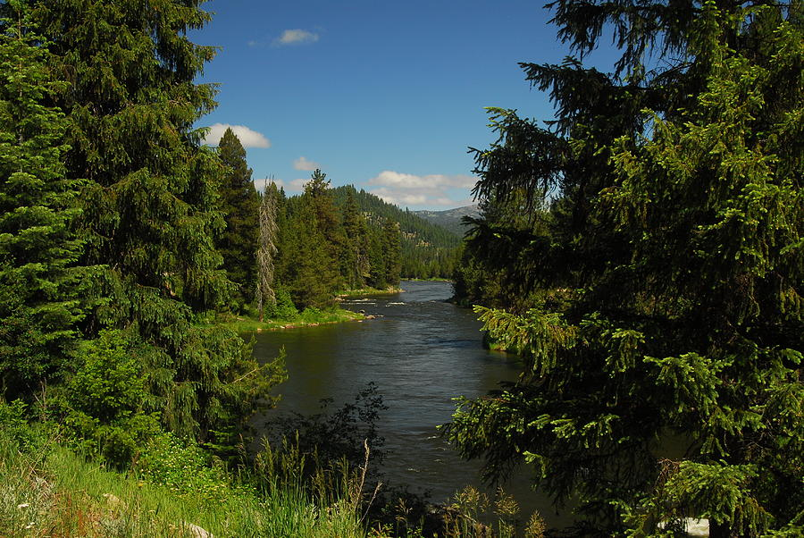Wilderness Photograph - Overlooking The Lochsa River In Idaho by Larry Moloney
