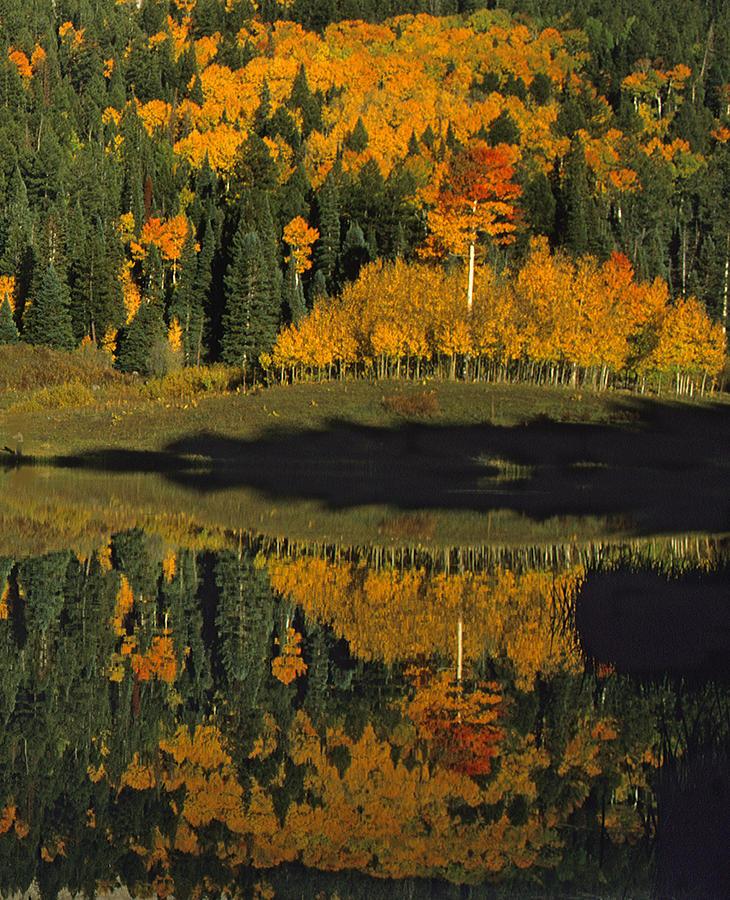 Owl Creek Pass Fall 1 Photograph By Susan Rovira