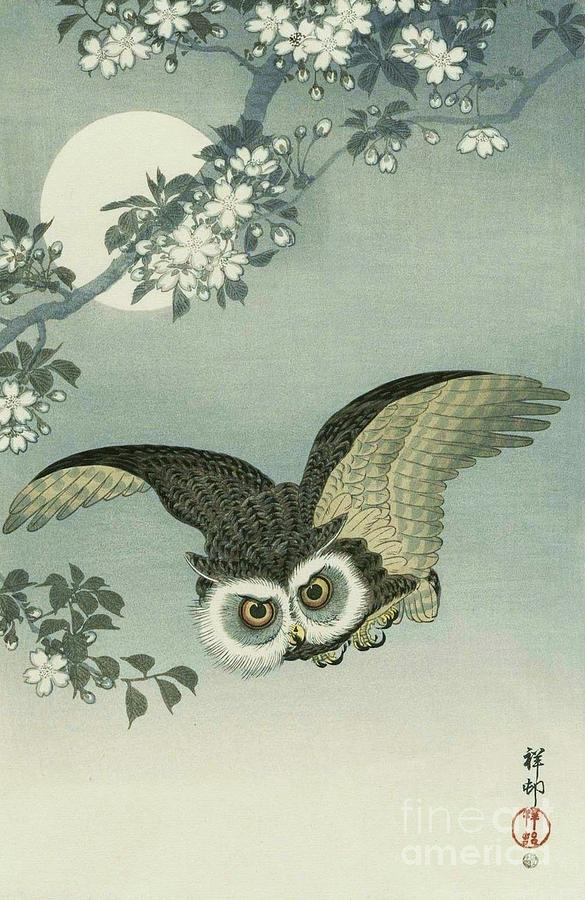 Owl - Moon - Cherry Blossoms Painting