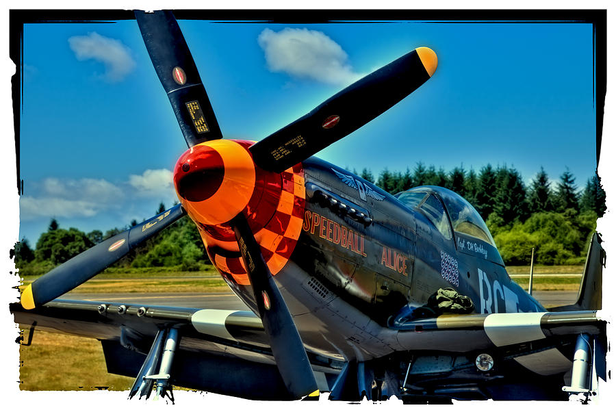 P-51 Speedball Alice Mustang Photograph - P-51 Mustang by David Patterson