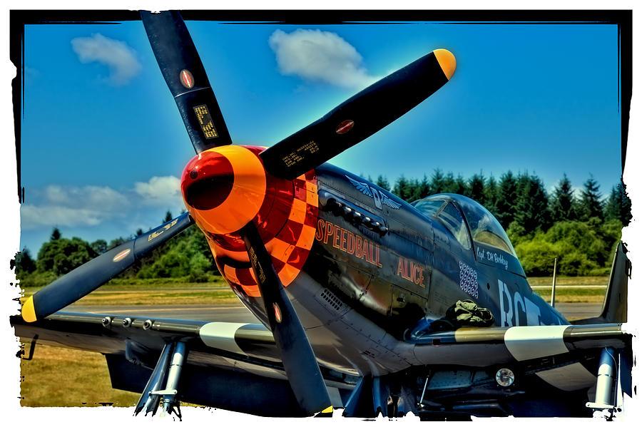 P-51 Mustang Photograph