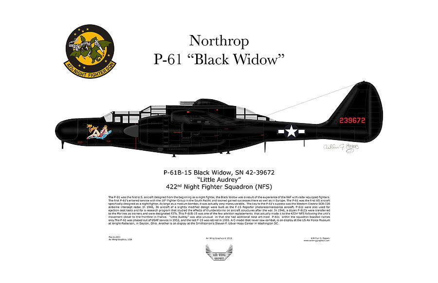 Northrop Digital Art - P-61b Black Widow by Arthur Eggers