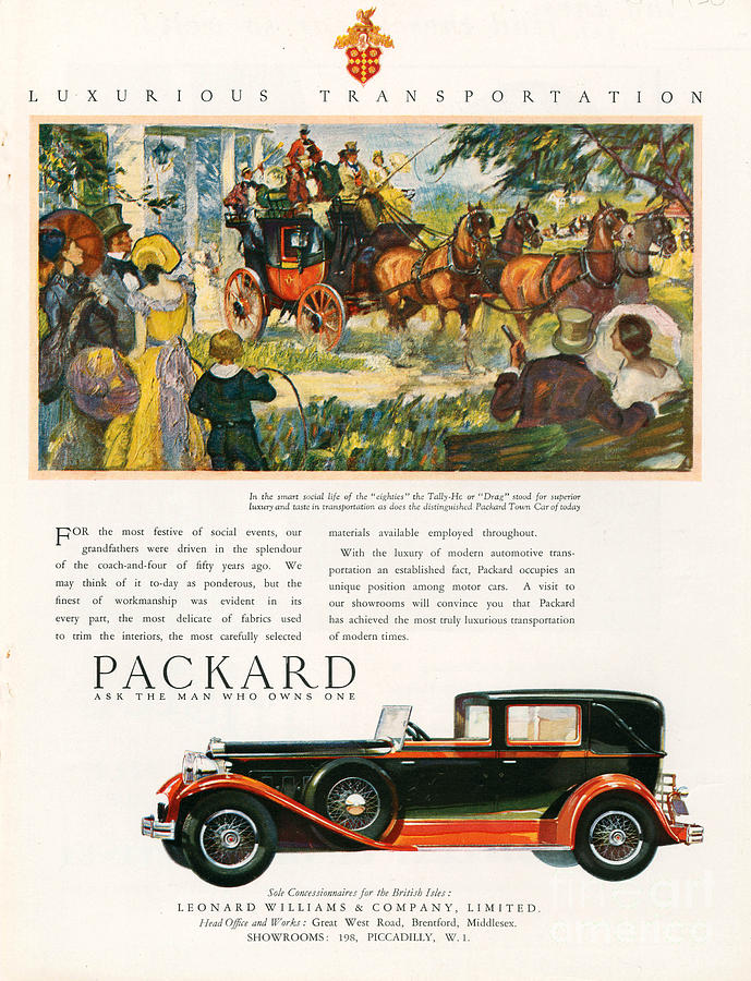 Packard 1930 1930s Usa Cc Cars Horses Drawing  - Packard 1930 1930s Usa Cc Cars Horses Fine Art Print