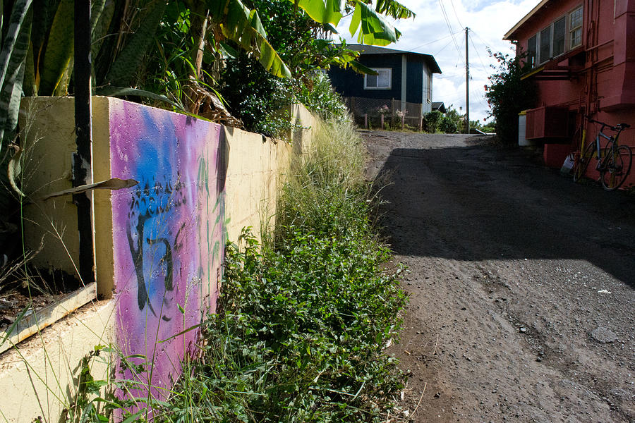 Paia Alleyway Photograph
