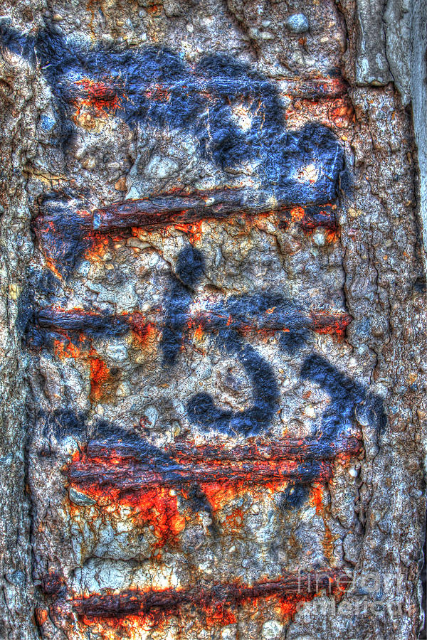 Concrete Photograph - Paint And Rust 25 by Jim Wright