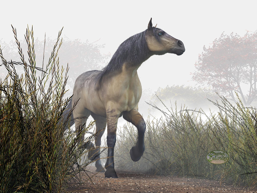 Pale Horse In The Mist Photograph