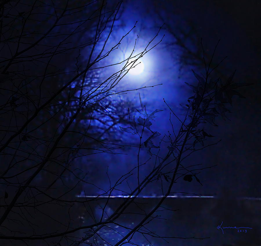 Pale Moon Photograph by Kume Bryant