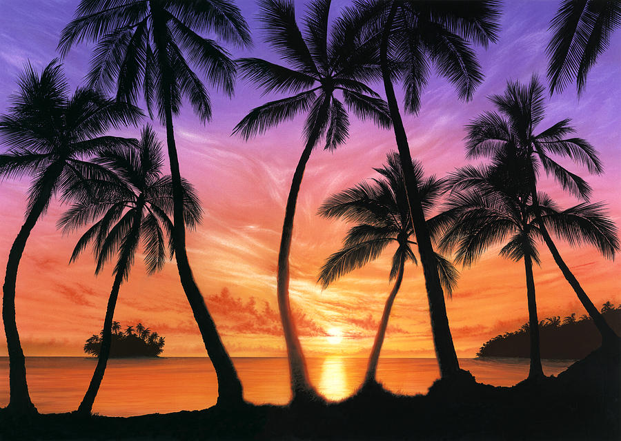 Palm Beach Sundown Photograph