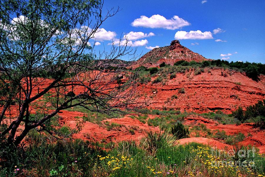 Palo Duro Canyon State Park Photograph - Palo Duro Canyon State Park by Thomas R Fletcher