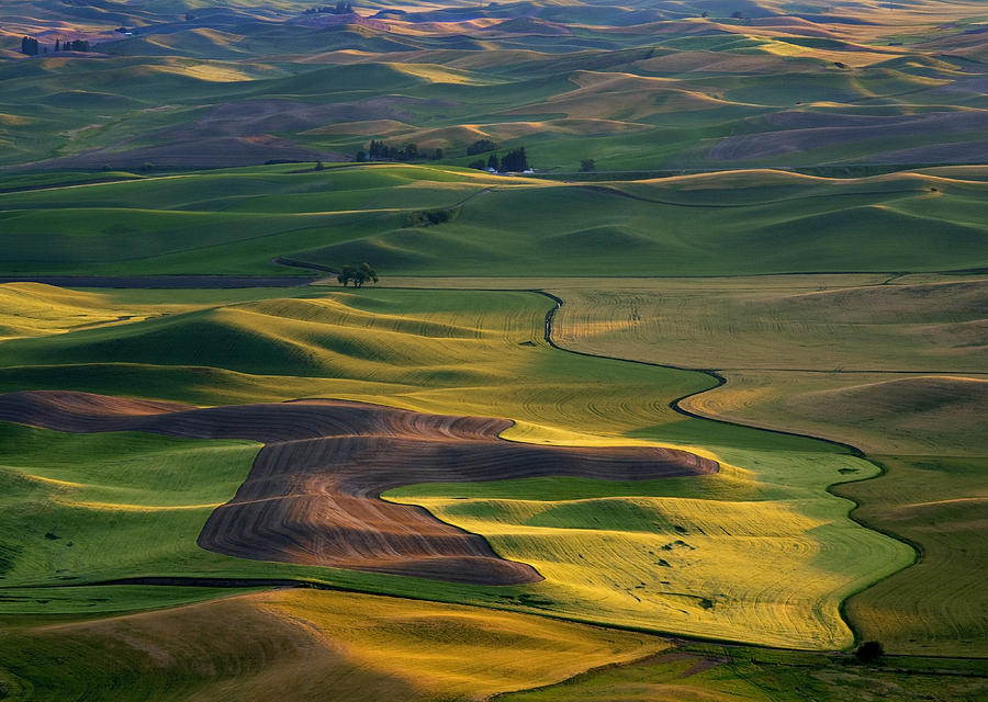 Palouse Photograph - Palouse Shadows by Mike  Dawson