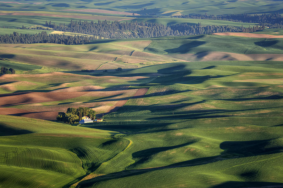 Palouse - Washington - Farms - #2 Photograph