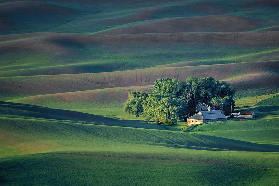Palouse Photograph - Palouse - Washington - Farms - #3 by Nikolyn McDonald