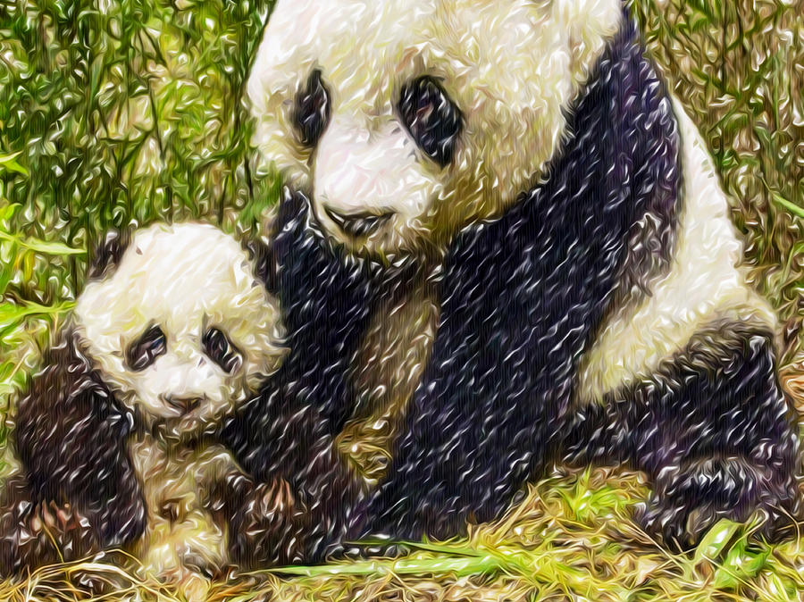Amazoncom If You Were a Panda Bear 9780061950902