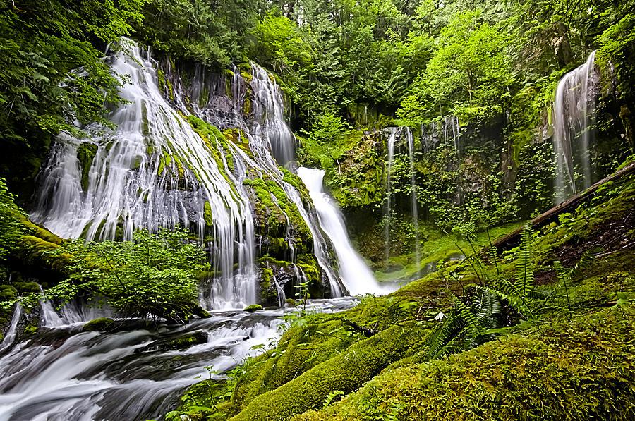 Panther Creek Falls Photograph