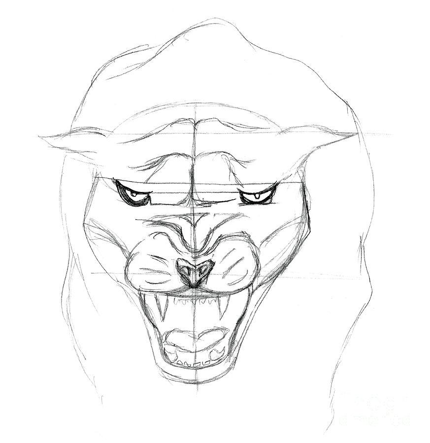 Panther Sketch Drawing