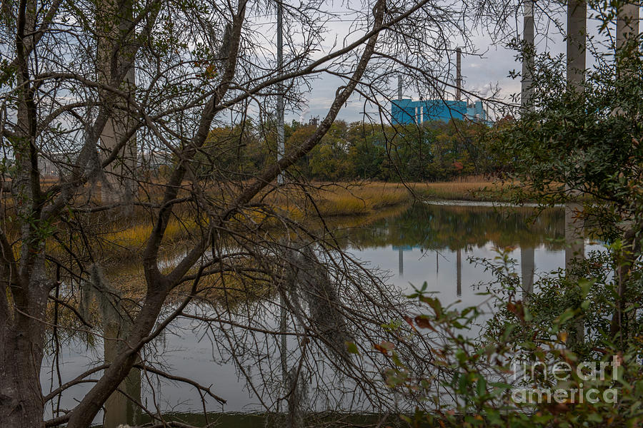 Paper Mill Through The Trees Photograph