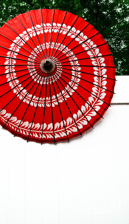 Paper Umbrella With Swirl Pattern On Fence Photograph