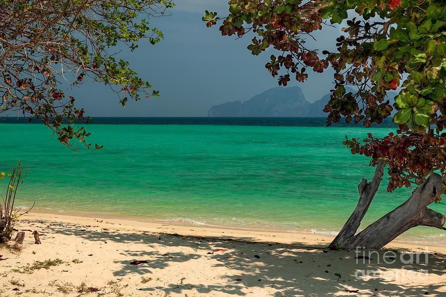 Asia Photograph - Paradise Found by Adrian Evans